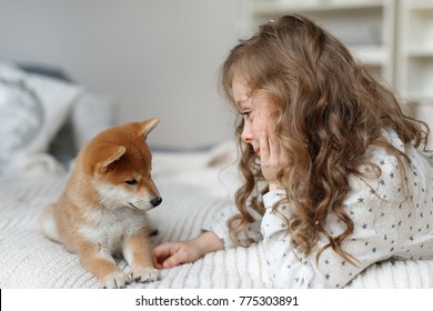 Small female kid has long curly hair plays with her favourite dog on bed, being glad to spend time with pet alone, have good relationships. Children and animals concept. Girl cares about pet