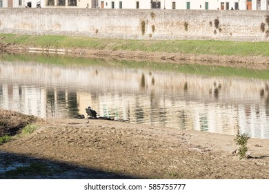 Small figure of an old man fishing on the banks of Arno river in Florence, Italy