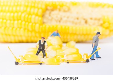 Small figure of workers with corn on white background.