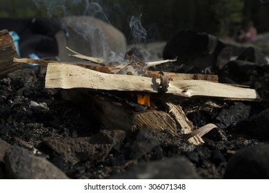 A small fire just starting in a fireplace with some birch wood