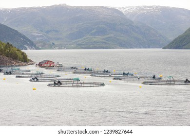 Small fish farm in Norway, Europe.