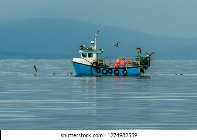 Small Fishing Boat With Lobster Pods And Seagulls On Calm Atlantic In Front Of The Hebride Islands