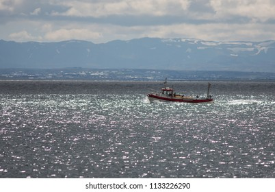 Small fishing boat, trawler in Iceland west coast in a beautiful scene under the mountains on ocean, sea, with small villages in background, Akranes