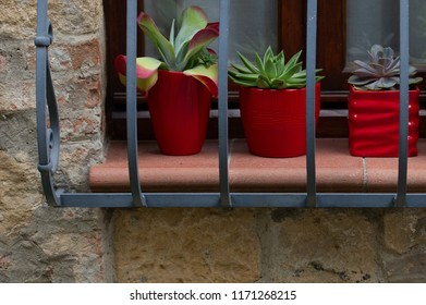 Small flower pots with succulents on a balcony in Italy