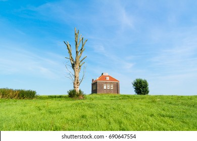 Small foghorn house and trunk of dead tree in old harbour of former island Schokland, Noordoostpolder in province of Flevoland, Netherlands