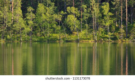 Small forest lake at summer in Finland