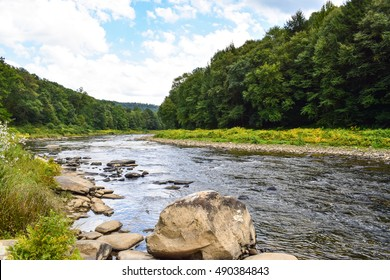 A small forested river in western Pennsylvania.