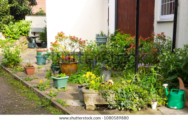 Small Front Garden Plant Pots Stock Photo Edit Now 1080589880