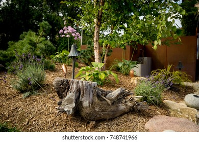 A small garden during summer.