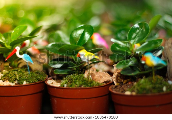 Small Garden Features Green Trees Small Stock Photo Edit Now