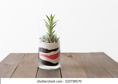 Small garden with miniature succulent plant and colored sand in glass vase on dark wooden background.