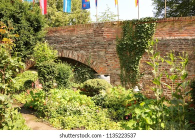Small garden on the old City wall in the fishing district of Ulm