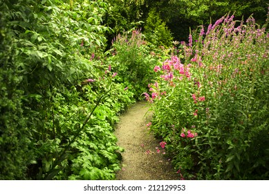 A small garden path amidst lush green vegetation and purple and pink perennials. Sun and shadow