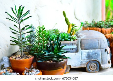 Small Garden with a vintage clay truck