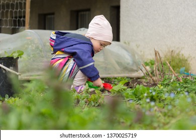 Small girl exploring the garden and helping with spring cleaning.