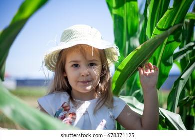 Small girl in a straw hat in a corn field
