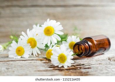 Small glass bottle with essential chamomile oil on the old wooden background. Chamomile flowers, close up. Aromatherapy, spa and herbal medicine ingredients. Copy space, selective focus.
