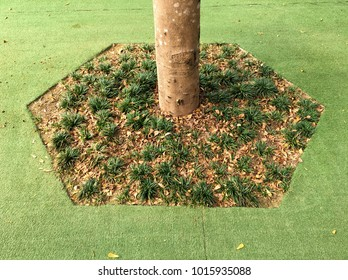 Small grasses and artificial grass in garden