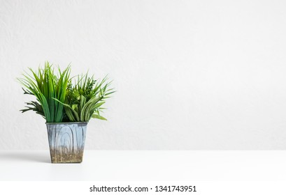 Small grassy decorative plant in flowerpot on desk, copy space