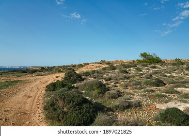 A small gravel road (trail) in a rocky landscape. The maltese mediterranean countryside on a sunny day in late summer (autumn). Hiking and vacation on the island of Malta, Europe.