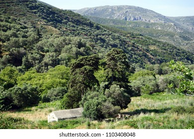 Small greek orthodox church and mountain on the Crete island, Greece