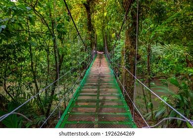 Small green bridge in the jungle cross the river of Tenorio national park Costa Rica. Central America.