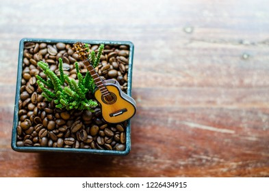 a small green cactus in black rectangular flowerpot have many coffee bean is roasted in flowerpot and put a small guitar  for decorate on top  put on a wooden table
