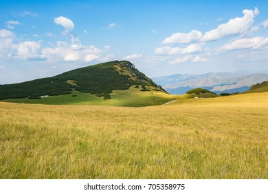 Small green mountain in the middle of yellow field in nature