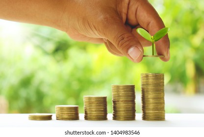 Small green trees that are growing in the hands of people on the gold coin pile, different from the bank financial concept.