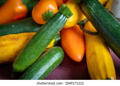 une petite courgette verte au milieu des petits légumes du jardin