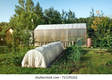 Small greenhouse in the garden