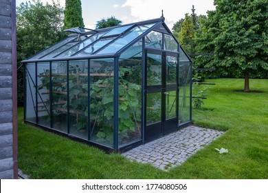 ein kleines Gewächshaus im Garten