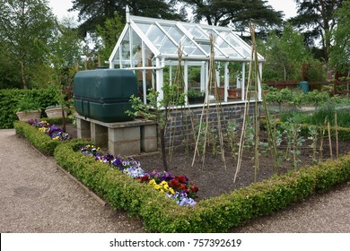 Small greenhouse with water tank in English vegetable garden