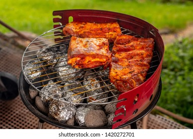 a small grill full of roasted meat on the background of nature, in the summer, warm evening