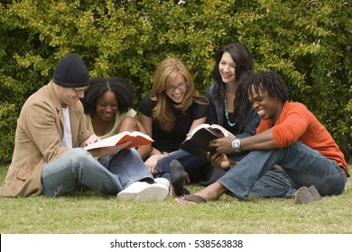 Small group of friends studying together.