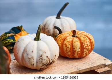 Small halloween pumpkins in orange, yellow and white colors on a wooden crate