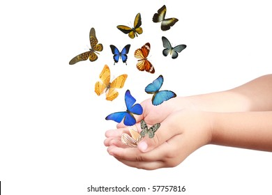 small hand and colorful butterflies isolated on white