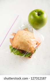 Small Healthy Child's Lunch in Plastic Bag