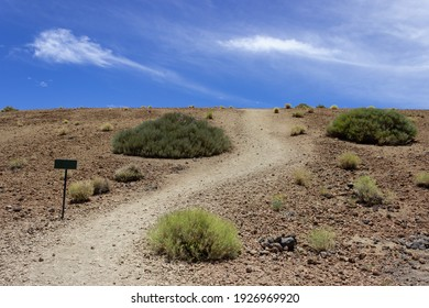 Small hiking sign next to hiking trail. With footpath leading to the horizon. Emtpy sign with writing space on the island Tenerife Spain