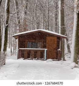 Small house in a small deciduous forest