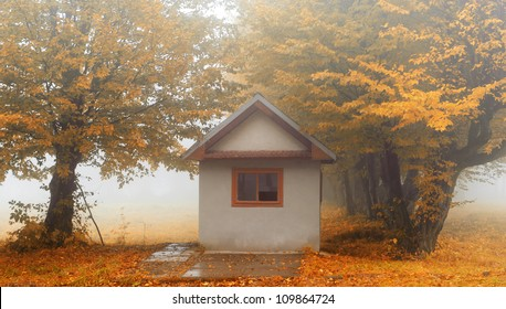 Small house in foggy forest. Autumn weather