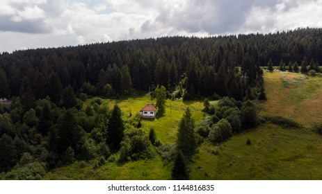 small house in middle of forest on sunny day