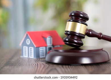 Small house model and law hammer