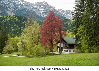 Small house near Linderhof castle in Bavaria