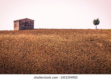 A small house and a small tree on the plowed land - Landscape of Tuscany