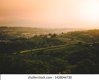 Small houses on top of green hill at sunset, vineyard, Friuli, Italy