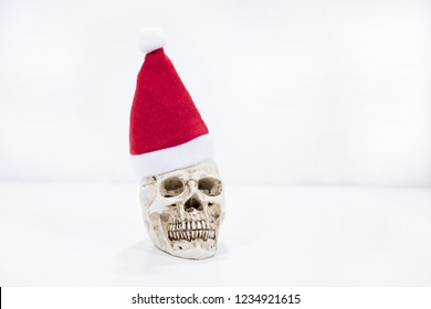 Small human skull with Christmas hat on it.