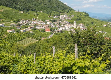 Small italian town Valdobbiadene, surrounded by vineyards, zone of production of traditional italian white sparkling wine Prosecco