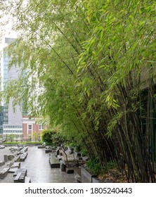 Small Japanese rock garden with a bamboo wall on one side in the city of Seattle to take a break from the busy city life and relax in a natural setting.