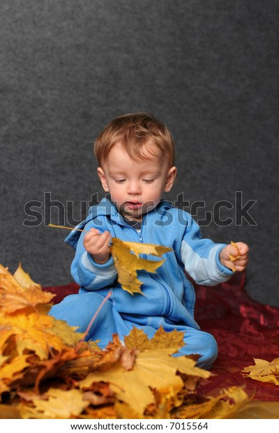 Small kid in blue suit plays with autumn leafs